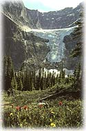 Jasper Adventure Centre, a view of Angel Glacier, Mount Edith Cavel.