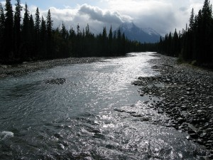 The Whirlpool River, as seen from Old Highway 93A. is a picture of calm relaxation. It wasn't always this calm, though. Back in the early 1800s, fur trading expeditions were common in the area.